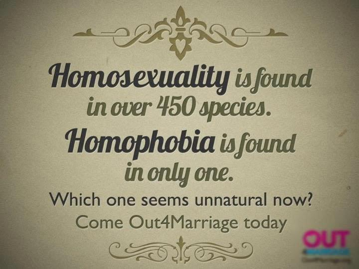 Using Homosexuality In Nature To Support Same-Sex Marriage Backfires ~ #SSM