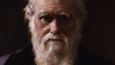 evolution as fact and theory essay Essay on darwin's theory of evolution labels: darwin essay example, free essay on evolution theory, sample essay on darwin, the theory of evolution.