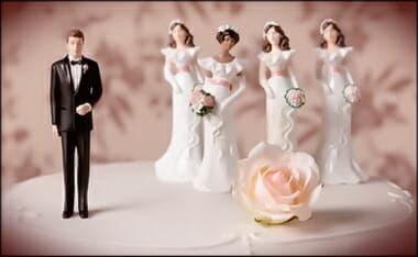Polygamy wedding cake