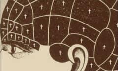 Brain Presup 380