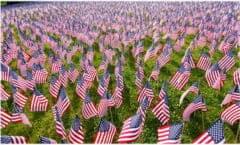 Flags Memorial Day 380