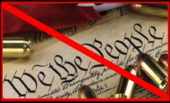 Second-amendment-ban