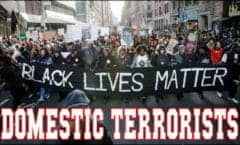BLM-Terrorists 380