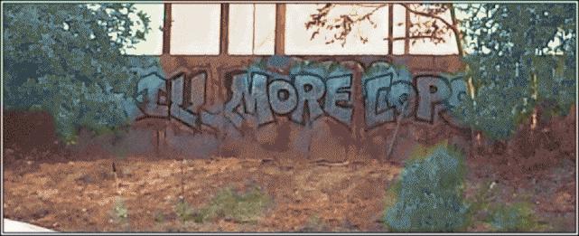 Kill More Cops